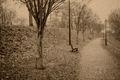 Fog, Newburyport, historic, New England