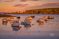 Samoset, owls head, harbor, new england, warm light