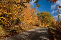 Foliage, Trees, Dirt Road, Vermont, October, Road, New England, Fall