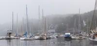 Camden, Maine, Fog, Harbor, Sail Boats, New England, Panorama