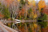Camp, Boat, Schoodic Lake, Foliage, Maine, October, New England, Fall