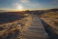 PRNWR, New England, Impressionism,Fine Art, Massachusetts, Boardwalk, Walkway, Plum Island