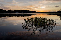 sunset, new england, massachusetts, pentucket pond