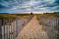 Plum Island,MA,Massachusetts,New England,Sand,Beach