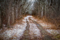 Snow,dirt road,down the road,new england,scenic