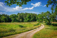 New England, scenic, Ipswich, Landscape, dirt road