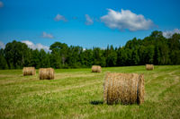 Maine, Hay Bales, Farm, Field, New England, Grass, Hay, Clouds, Blue Sky