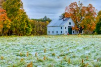 October, Snow, Foliage, Byfield, Massachsuetts, New England, Fall, tree