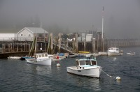 Owls Head, Maine, Fog, Sun, New England, Boats, Harbor, Lobster Boats