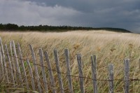 Popham Beach Storm