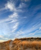 Salisbury, Path, Salisbury beach, Massachusetts, Nature, Blue Sky, beach