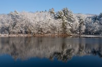 Snow, Water, Trees, pond, winter, Nature, New England,Massachusetts