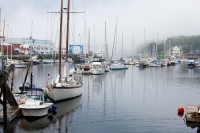 Camden, Harbor, Boats, Sail Boats, fog, Maine, New England
