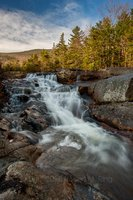 Ammonoosuc River, beaver pond, nh, white mountains, new england