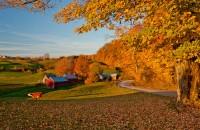 Vermont, cow, jenne farm, dawn, New England Photo Workshops