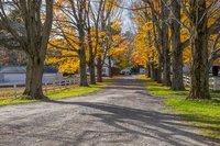 Berkshires, New England, MA, Equestrian, horse, Inn, New England Photo Workshops