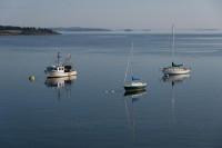 Mixed Boats