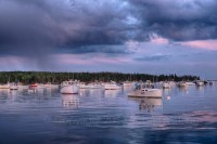 Owls Head, Harbor, Maine, coast, shore, rain