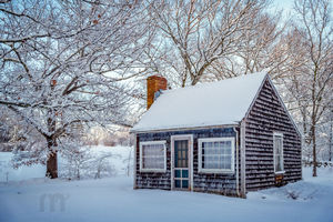 Gardener's Shed In Winter