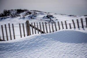 Provincelands Fence
