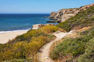 Trail To Santa Cruz Beach