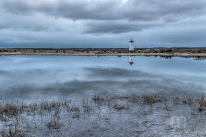Edgartown Harbor Light Reflections