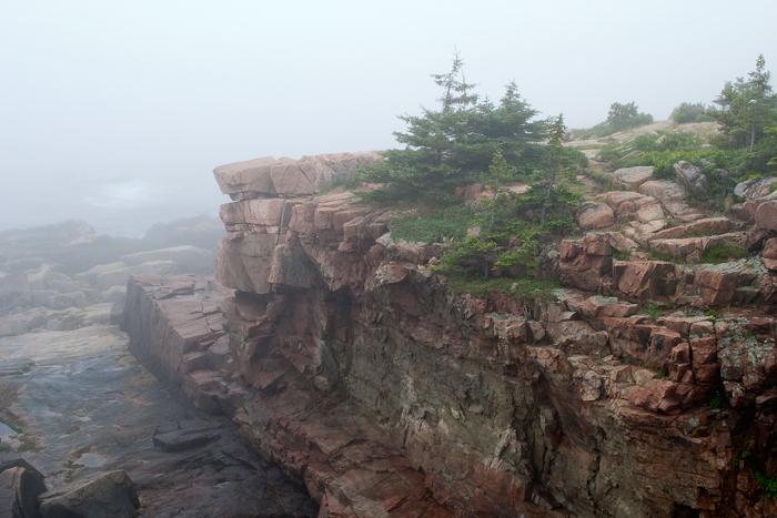 Rocky Acadia Maine Coast In Fog