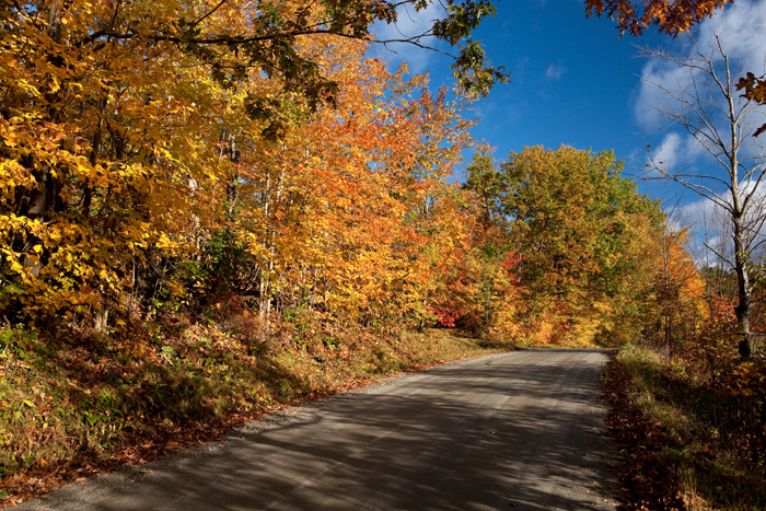 Back road in Vermont with foliage in October