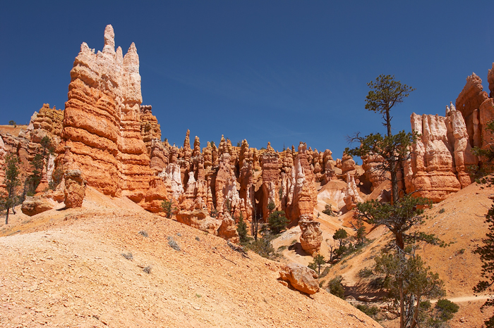 Photo of the fascinating formations along the Queens Garden Trail in Bryce Canyon National Park in Utah.