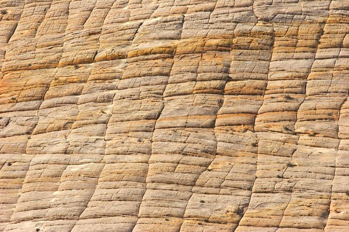 Unique stone looks like a checkerboard.