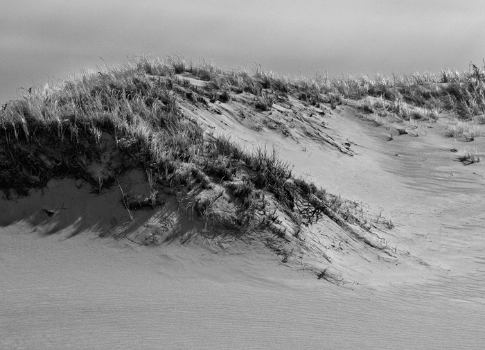 These dunes are protected in this area so one can't walk inthem.