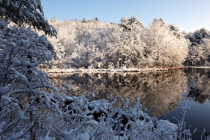 December, snow, Nature, trees, New England, pond, photo