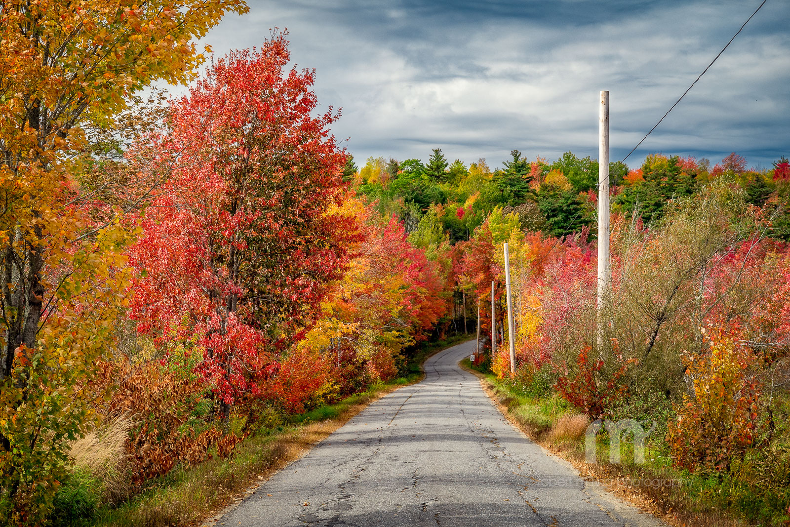 Fall foliage, Maine, Samoset, photo