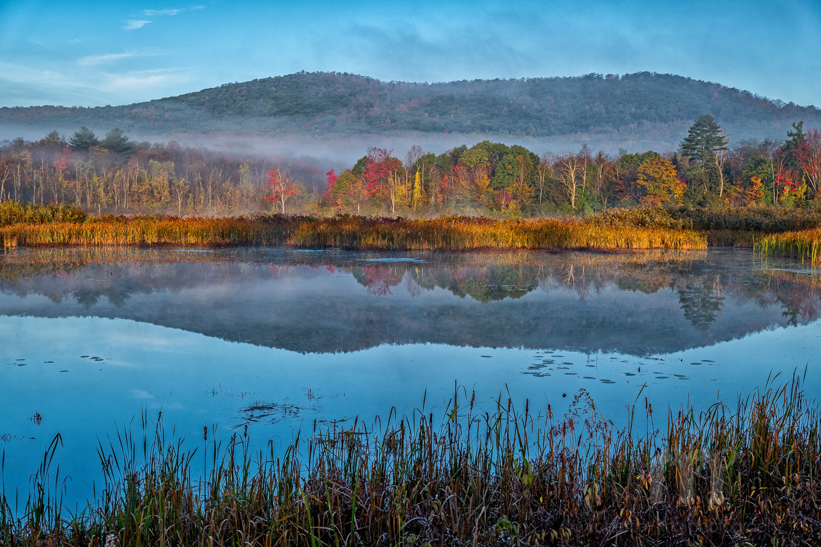Berkshires, NEPW,fog,New England,MA, photo