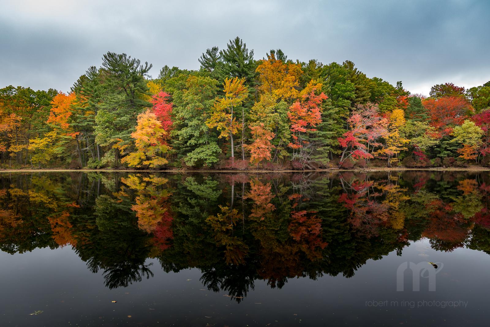 Foliage, new england, Massachusetts, Fall, photo