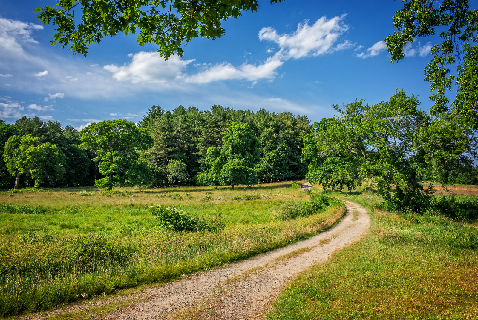 New England, scenic, Ipswich, Landscape, dirt road