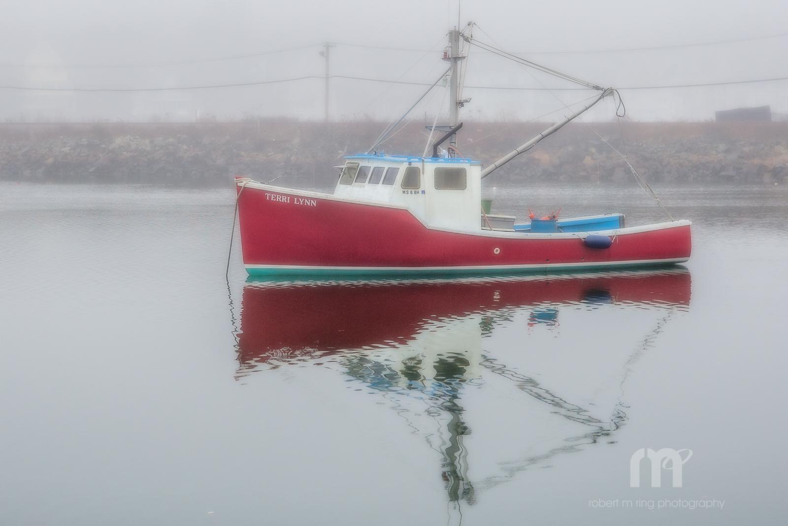 Fog, photo