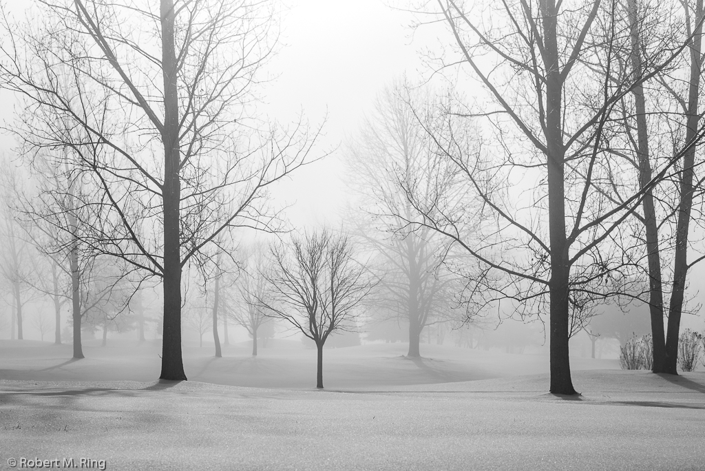Snow, light, fog, black and white, new england, photo