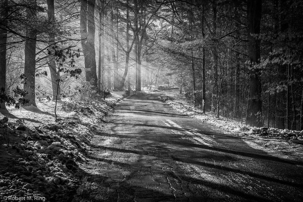 Snow, shadows, light, New England, Black & White, fog, photo