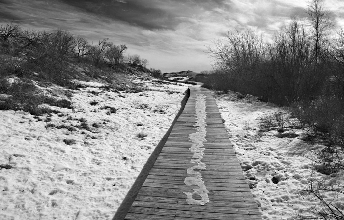 Plum Island, Walkway, Newburyport, Massachusetts, New England, Black & White, Beach, photo