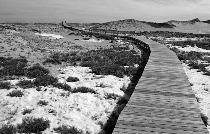 Plum Island, Massachusetts, New England, beach, walkway, winter, photo