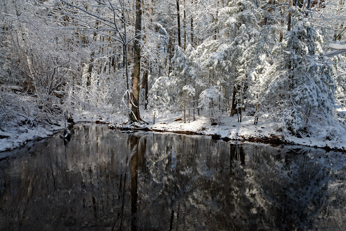 Snow, trees, relfection, New England, Nature, pond, photo
