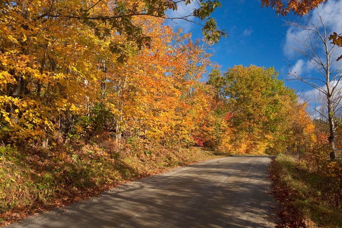 Vermont, Back road, foliage, Fall, New England, photo