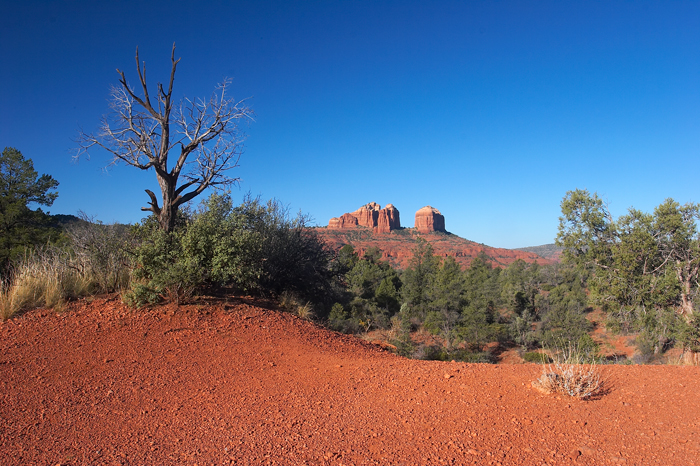 A great area to hike in. Can't believe how red the sand is there.