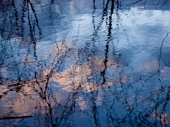 Reflection, water, blue sky, trees, pond, Nature, photo