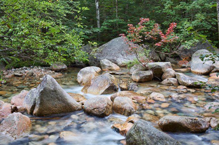 Roaring Brook, Brook, Baxter State Park, Maine, Nature, New England, photo