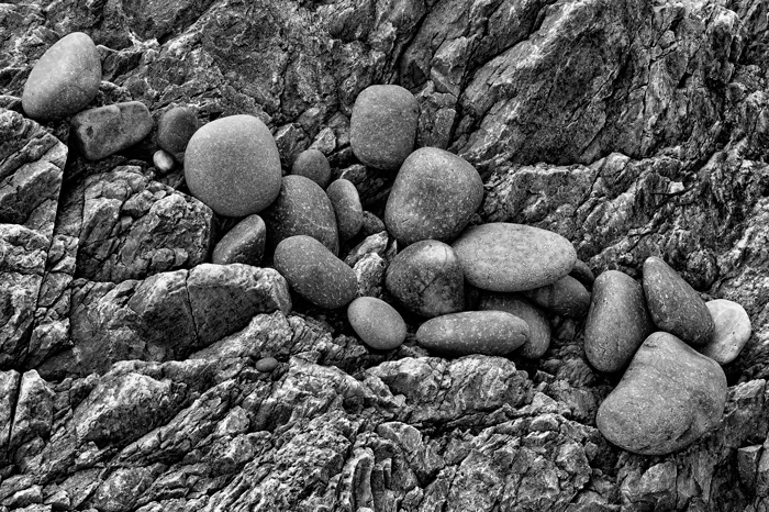Rocks, Shore, Maine, Black & White, Rockport, photo