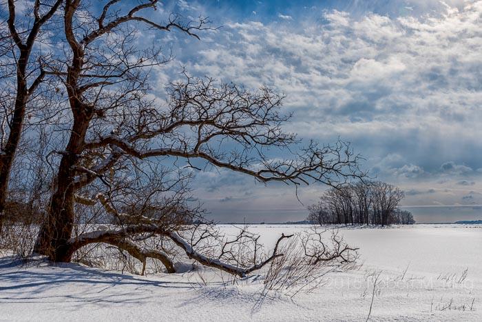 Snow, Rowley, MA, New England, photo