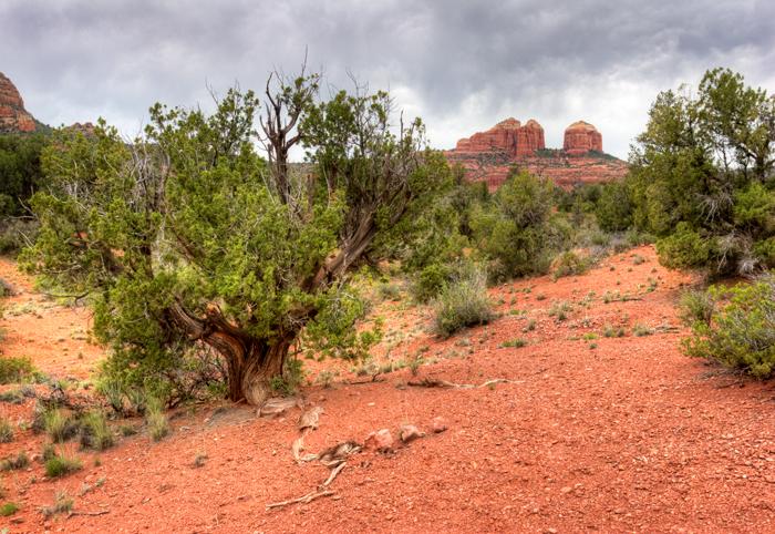 Sedona, Arizona, Desert, West, West of New England, photo