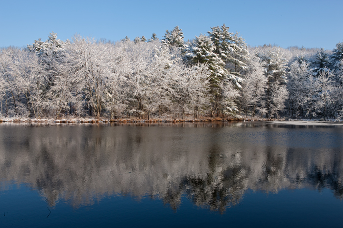 Snow, Water, Trees, pond, winter, Nature, New England,Massachusetts , photo